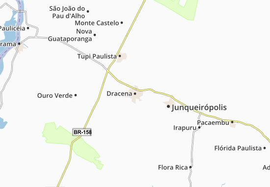 Mappe-Piantine Dracena