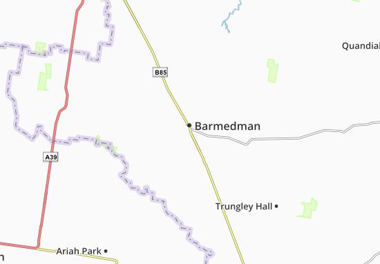 Barmedman Map