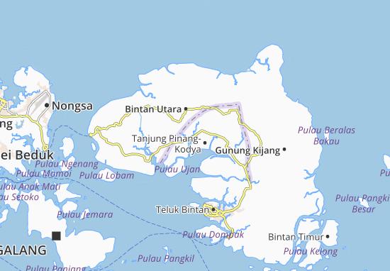 Mappe-Piantine Tanjung Pinang-Kodya