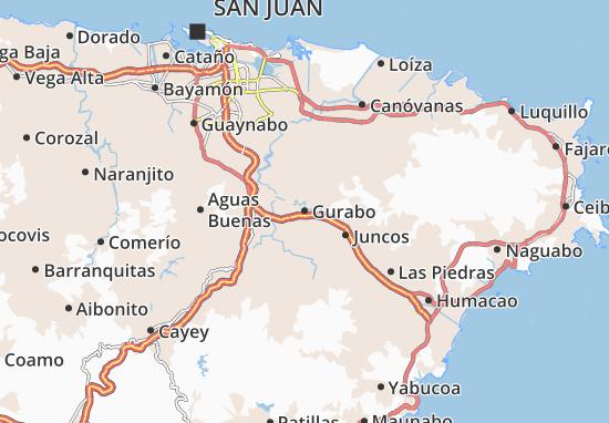 Gurabo Map