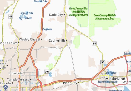 Mappe-Piantine Zephyrhills South