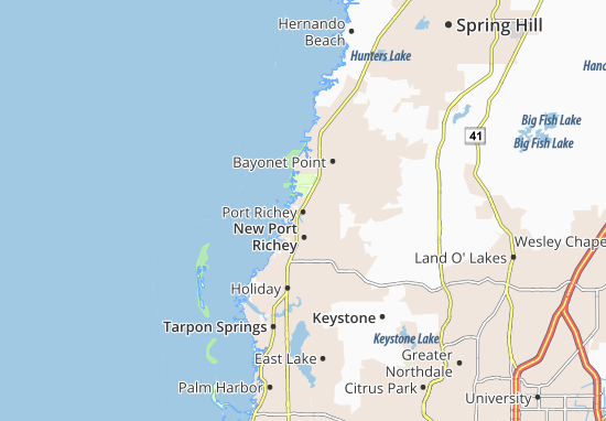 Mappe-Piantine Port Richey
