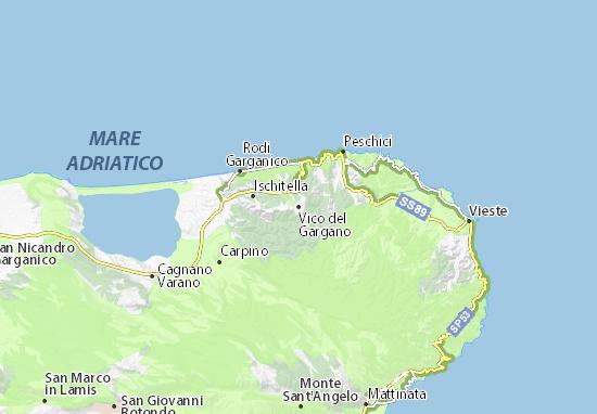 Mappe-Piantine Vico del Gargano