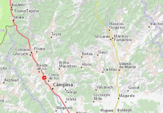 Mappe-Piantine Bertea