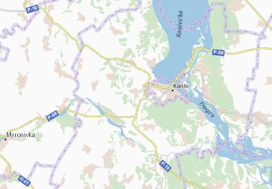Carte-Plan Lytvynets'