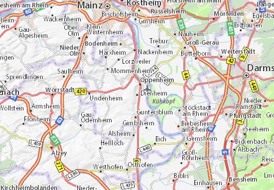 Carte-Plan Dienheim