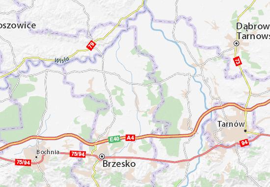 Mapa Borzęcin