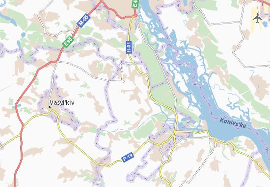 Carte-Plan Velyki Dmytrovychi