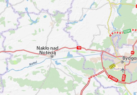 Ślesin Map